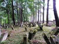cmentarz-zydowski-w-lesku